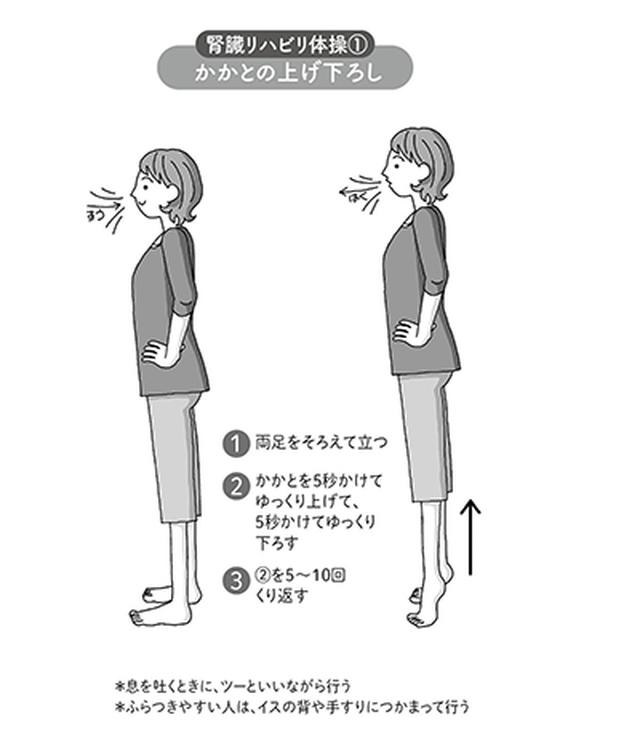 画像: 腎臓リハビリ体操「かかとの上げ下ろし」図解