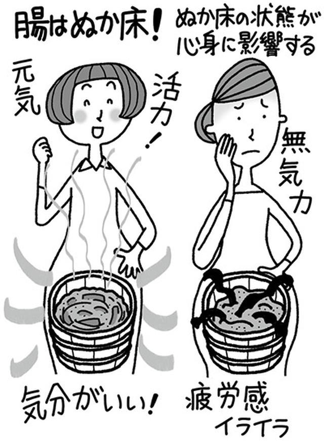 画像: 自分のぬか床(腸)をよい状態に育てる