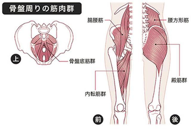 画像: 3ヵ月ほどで尿もれが改善する人が多い
