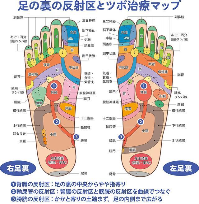 画像1: 頻尿・尿もれに効く「足の裏もみ」のやり方