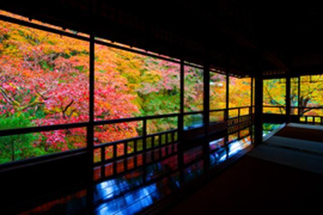画像: SDRでの見え方(出典:EIZO) 日陰の暗い部分が黒つぶれ www.eizo.co.jp