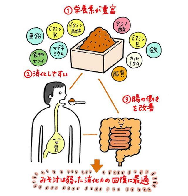 画像: みそは完全栄養食で消化力を回復させる