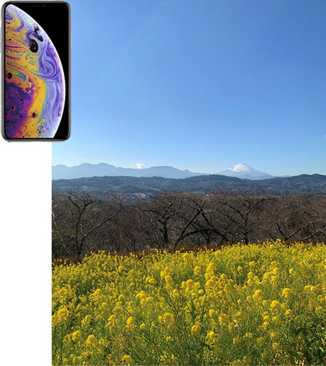 画像2: 【実写レポート】最新スマホカメラを比較!iPhone XS・Mate20 Pro・Pixel3 人気3モデルのおすすめポイントが判明!