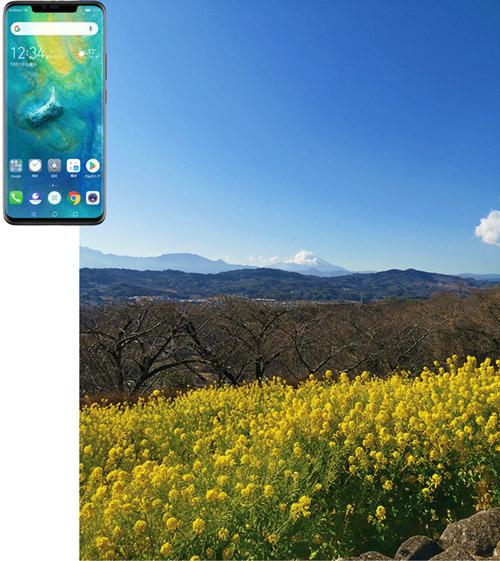 画像3: 【実写レポート】最新スマホカメラを比較!iPhone XS・Mate20 Pro・Pixel3 人気3モデルのおすすめポイントが判明!