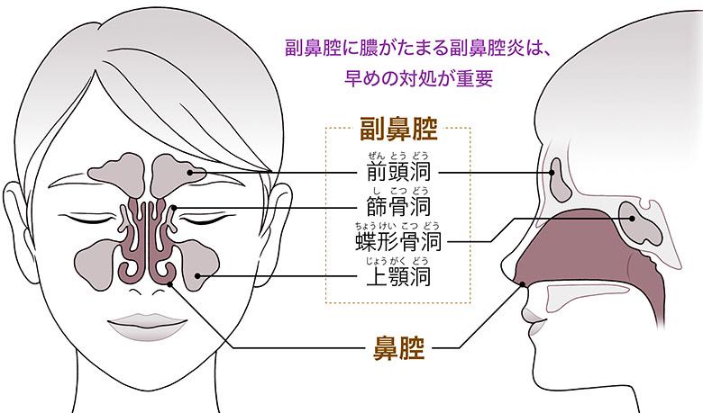 画像1: 【鼻づまり解消】止まらない鼻水対策にヨガが有効!?アレルギー性鼻炎・副鼻腔炎の間違ったセルフケアに注意