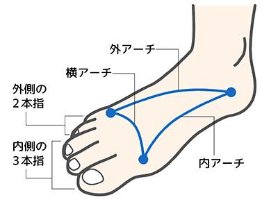 画像: 【外反母趾を改善】足のアーチを取り戻すには「輪ゴム」を使う方法がおすすめ!O脚・X脚の痛みにも