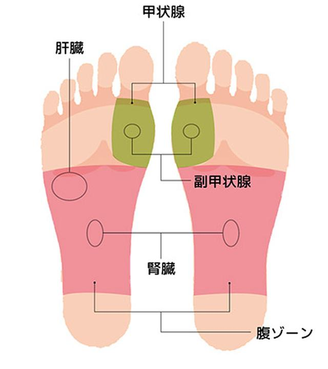"""画像18: 【症状別】足裏マッサージのやり方 不調や痛みを改善する""""痛くない""""足裏ケア"""