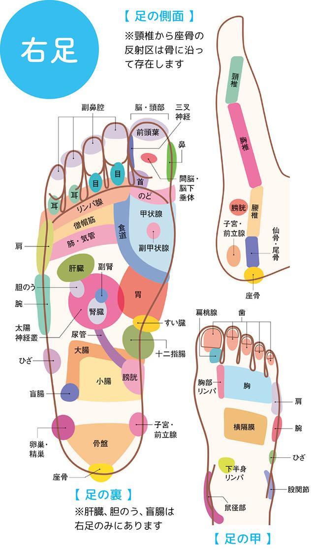 """画像1: 【症状別】足裏マッサージのやり方 不調や痛みを改善する""""痛くない""""足裏ケア"""
