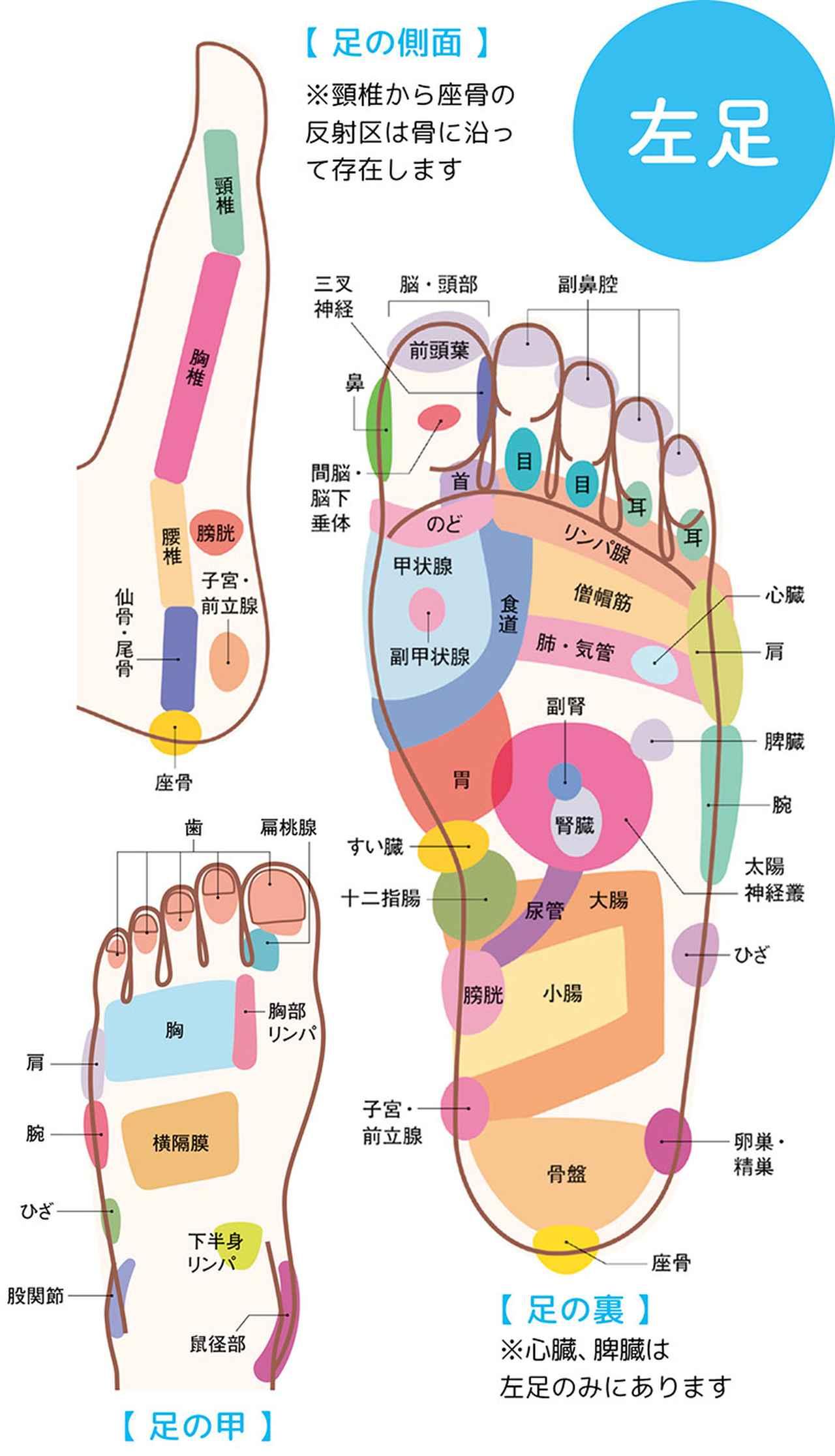 """画像2: 【症状別】足裏マッサージのやり方 不調や痛みを改善する""""痛くない""""足裏ケア"""