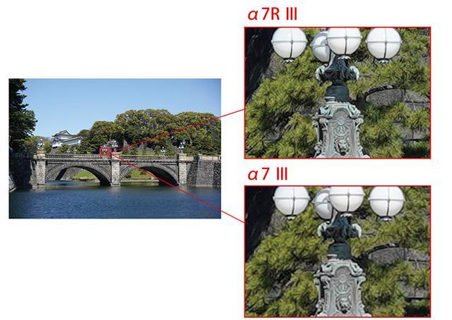 画像: ソニー・α7RⅢ(4240万画素)とα7Ⅲ(2420万画素)の画像を比較すると、細部の精細感に差があるのがわかる。
