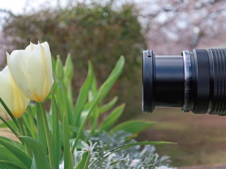 画像: レンズの最短撮影距離は、被写体から撮像面までの距離を示す。だが、レンズ先端部までの距離もチェックしたい。
