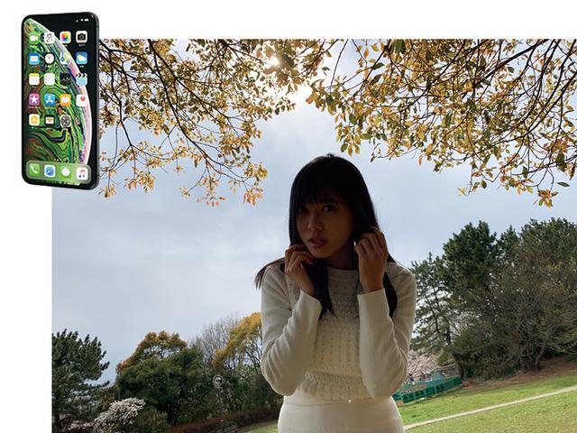 画像6: 【スマホカメラとコンデジの違い】背景ボケ・逆光に強いのはどっち?
