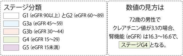 画像: ※日本腎臓学会の「eGFR男女・年齢別早見表」を参考に作成。 数値は18歳以上に適用で、クレアチニン値は酵素法で作成したものを用いる。