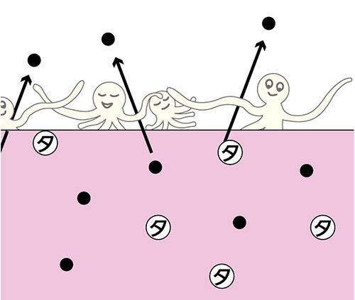 画像4: 【慢性腎臓病(CKD)】なぜ「運動」で腎機能が改善するのか