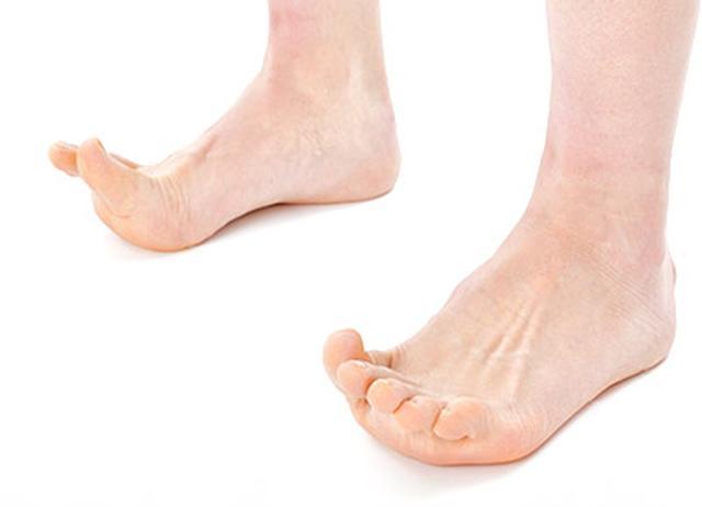 画像: 足の指を上げると、かかとで床を押ししっかり立つことになり、背中から首までしっかりと伸びる