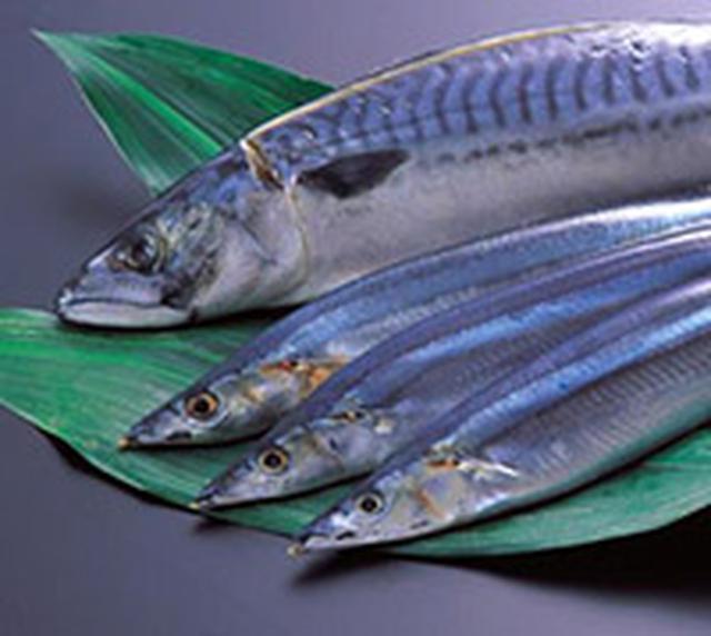 画像: 缶詰や焼き魚などで魚を食べよう