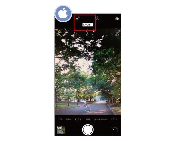 画像1: 【iPhoneカメラ】短い動画が撮れるのはなぜ?Live Photosと静止画の切り替え方法