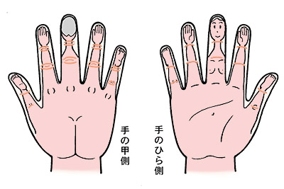 画像: 手と人体の対応図(高麗手指鍼)右手