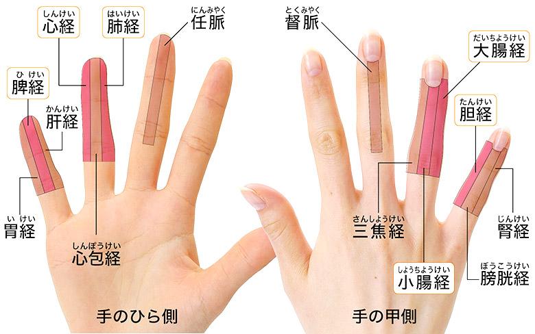 画像: 薬指テープで刺激する手指の経絡(右手)