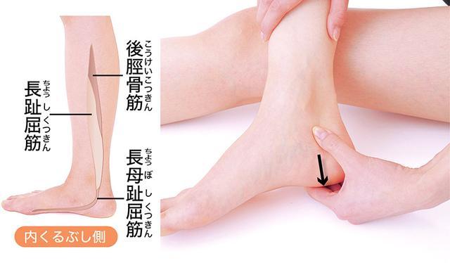 画像2: 【股関節痛】軟骨がすり減る原因に注目!3ヵ所の筋肉&腱をほぐす「骨はがし」のやり方