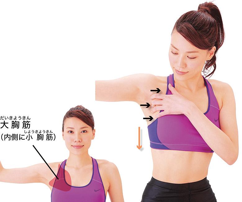 画像3: 【股関節痛】軟骨がすり減る原因に注目!3ヵ所の筋肉&腱をほぐす「骨はがし」のやり方