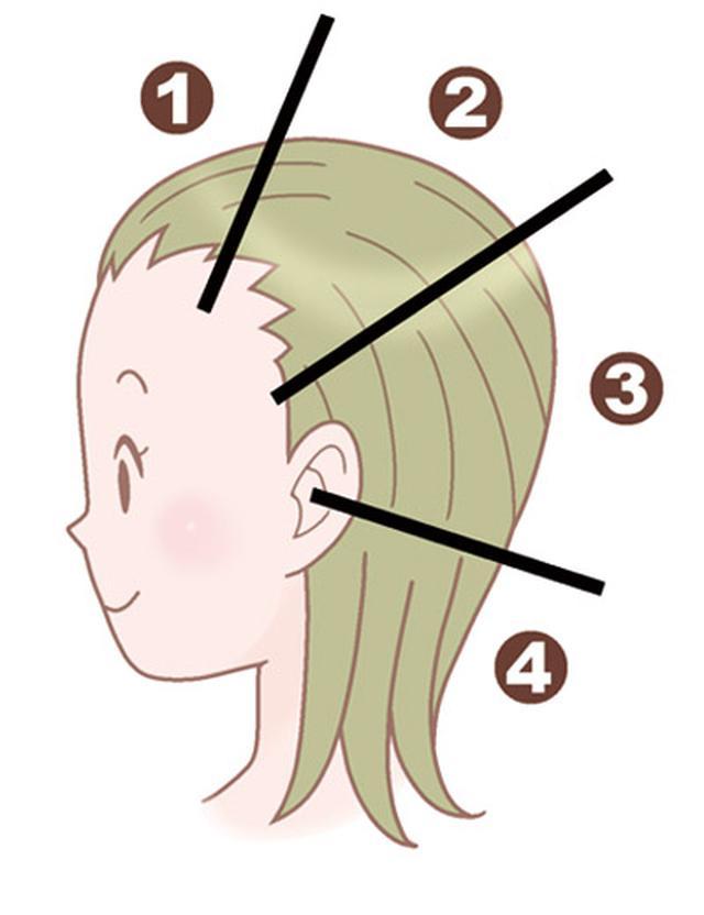 画像3: 【髪の洗い方】変えるだけで白髪や薄毛を防ぐ美容師考案の「シャンプー方法」