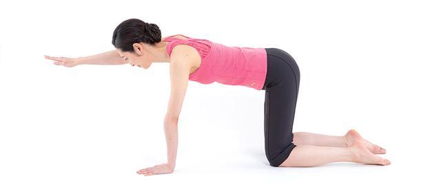画像3: 【痛みの再発を防ぐ体操】
