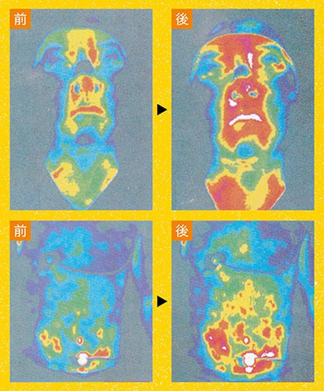 画像: 《血流がよくなり自然治癒力が上がる!》 手の刺激で体温が上がった 手の刺激を行って30分後、顔や、内臓の温度が上がっているのが確認される。血流がよくなり、冷えていた部位が温まると、自然治癒力も高まる