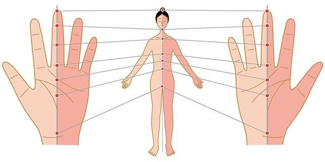 画像: 手にアプローチするだけで全身を施術できる 高麗手指鍼では、両手の表裏に全身のツボがあると考え、そのツボや経絡(本文参照)に鍼やお灸を施術することによって大きな治療効果を生み出すことができる。手に触れるだけで全身を施術できるという手軽さは手指鍼の魅力のひとつ