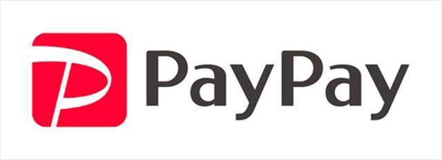 画像: 「PayPay20%還元キャンペーン」概要