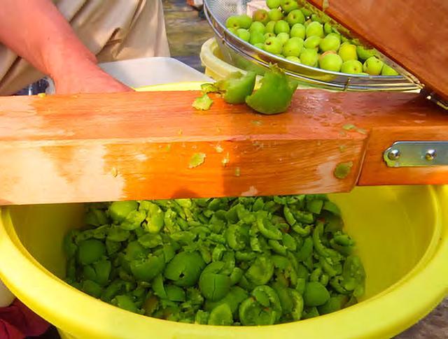 画像2: 【梅肉エキスの作り方】効果・効能は?薬草コンサルタントが伝授する最高峰の梅レシピ