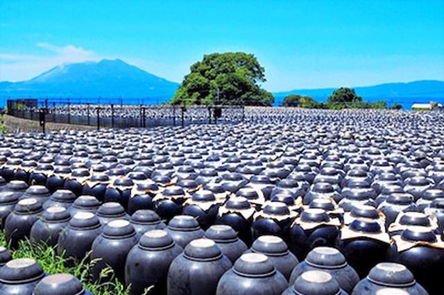画像: 微生物と太陽熱だけで発酵させる鹿児島の壺づくりの黒酢