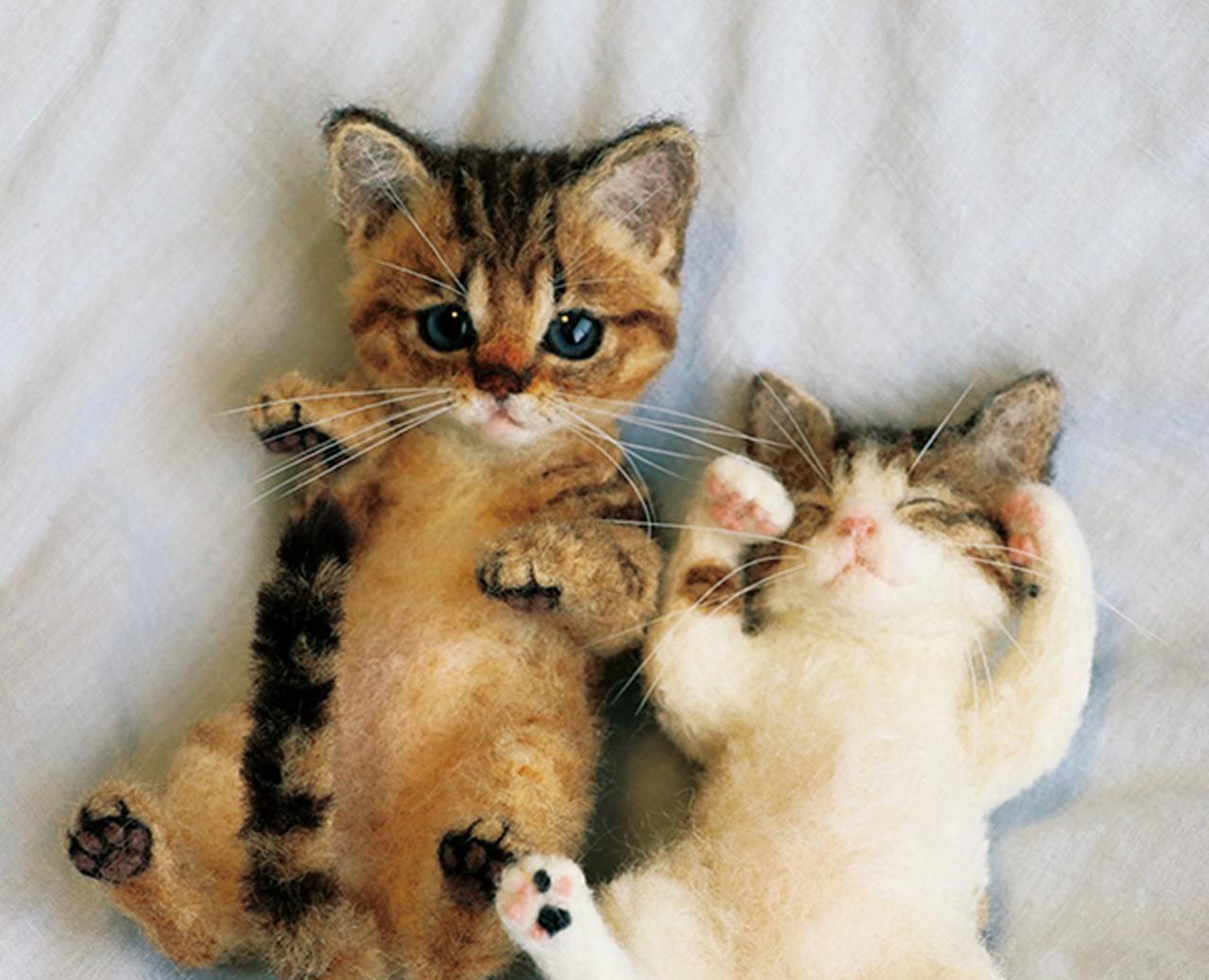 【猫の日】2月22日じゃないの? 実は世界猫の日は8月8日。大丸梅田店で「全館ねこだらけ」イベントが開催!
