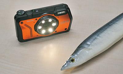 画像: レンズ周囲に近距離撮影用LED補助光を配置し、立体感を演出。