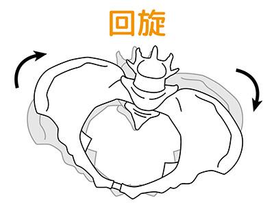 画像3: 【骨盤リセットダイエットのやり方】体のゆがみを治すと痩せる!バストもフェイスラインもリフトアップする
