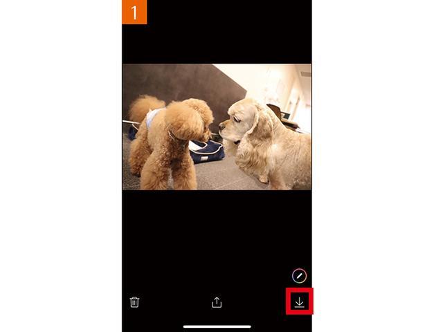 画像1: ●写真や動画を表示してから保存