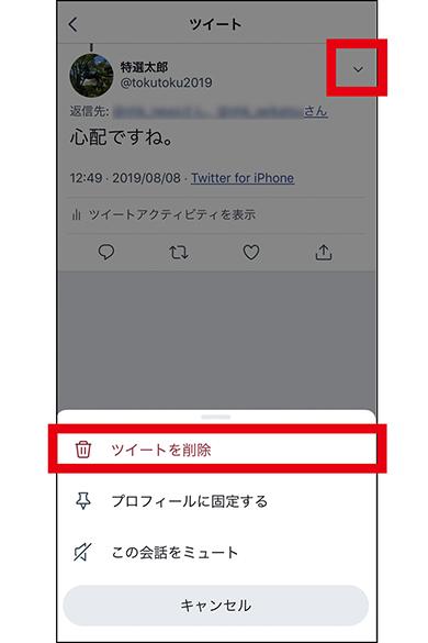画像3: 【ツイッター】リプライ・リツイートとは?削除・取消は可能?
