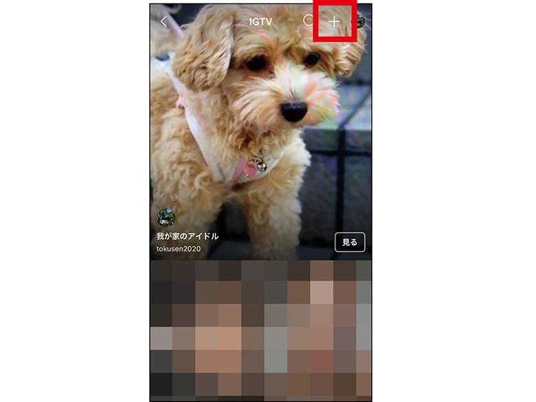 画像2: ●新しい動画共有メディアとして要注目
