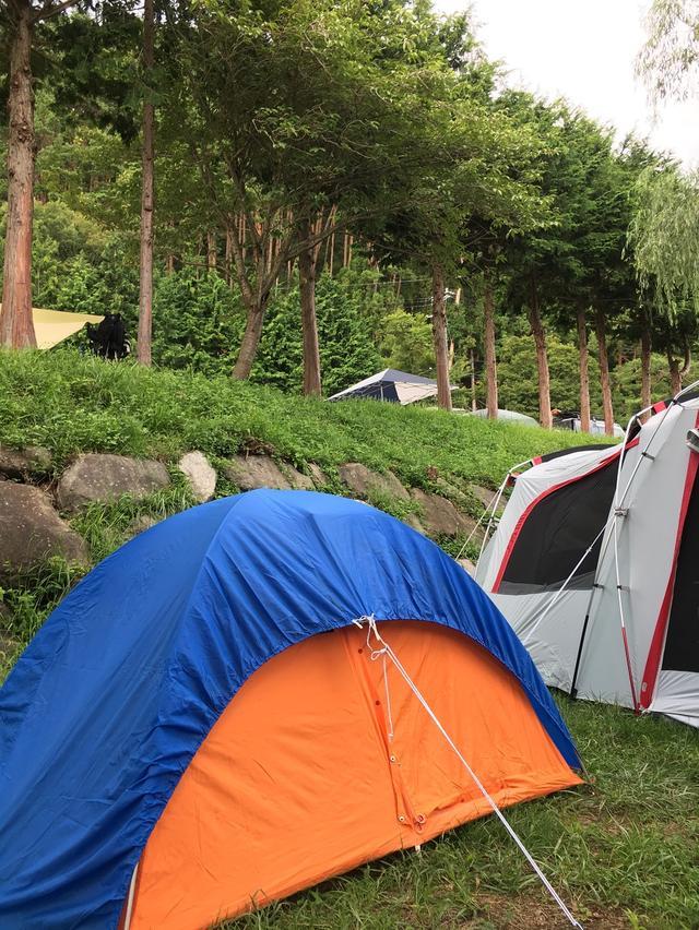 画像: フリーサイトに構えた2張りのテント
