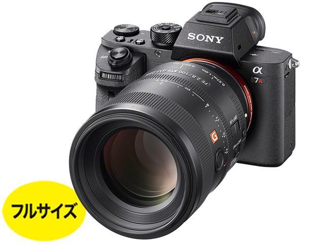 画像1: ミラーレス20万円以上 4240万画素の高解像度モデル。価格的にねらい目 ソニー 「α7R Ⅱ」