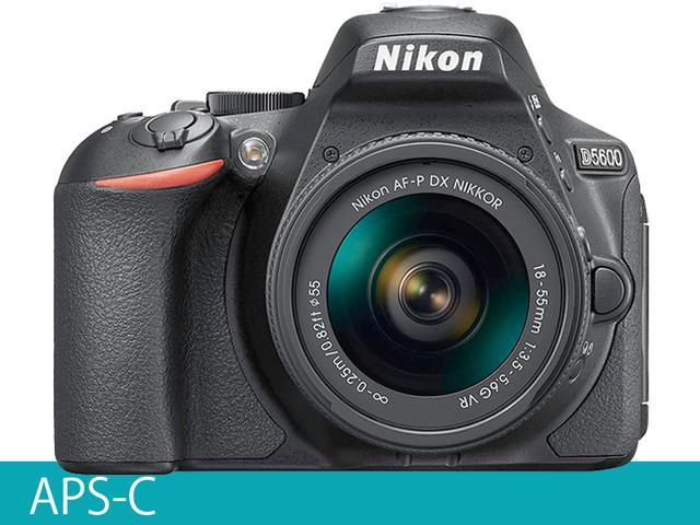 画像1: 一眼レフAPS-C ローパスフィルターレスで解像度の高い描写 ニコン「D5600」