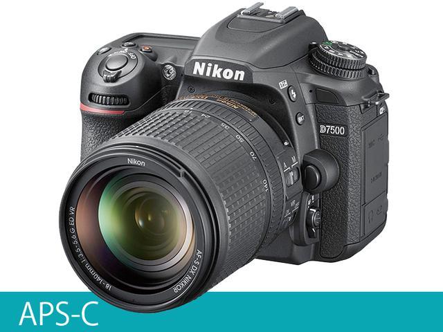 画像1: 一眼レフAPS-C 51点測距や8コマ/秒連写などスペックが充実 ニコン「D7500」