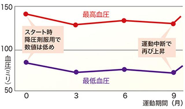 画像: 被験者平均年齢75.5歳。高血圧の患者十数名がスロージョギングと同等の運動を実施した結果、3ヵ月後血圧が低下(出典:Motoyama M et al,Med Sci.Sports Exerc 1998 より改変)