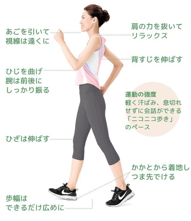 画像1: 呼吸筋の機能や血管の拡張反応が改善