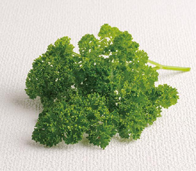 画像7: 【自己治癒力を高める野菜スープの作り方】7種の野菜でミネラルバランスを整える「ヒポクラテススープ」とは