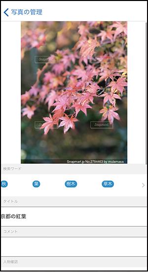 画像10: スマホで撮った写真の「保存・画像編集・フォトブック作成」のお得ワザ5選