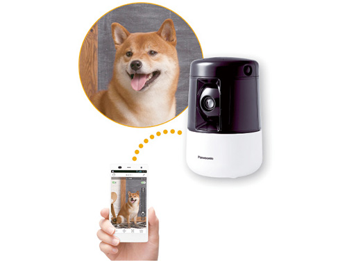 画像: カメラにはパン・チルト機構があり、スマホから操作可能。ペットを認識して、自動的に画角内に収まるよう追尾する機能もある。