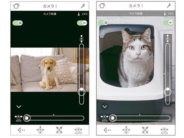 画像: 動画での監視に加え、静止画・動画の保存が可能。本体にスピーカーが装備されており、スマホを使ってペットへ話しかけられる。