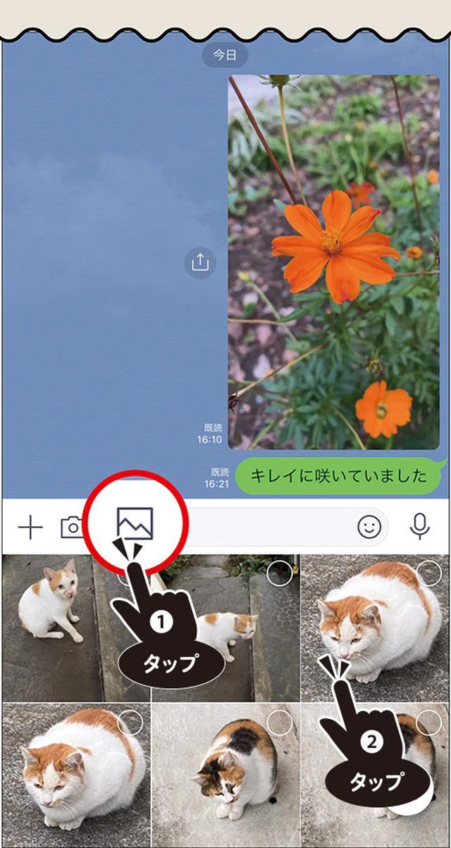 画像6: 一番簡単で手軽な 写真の送り方