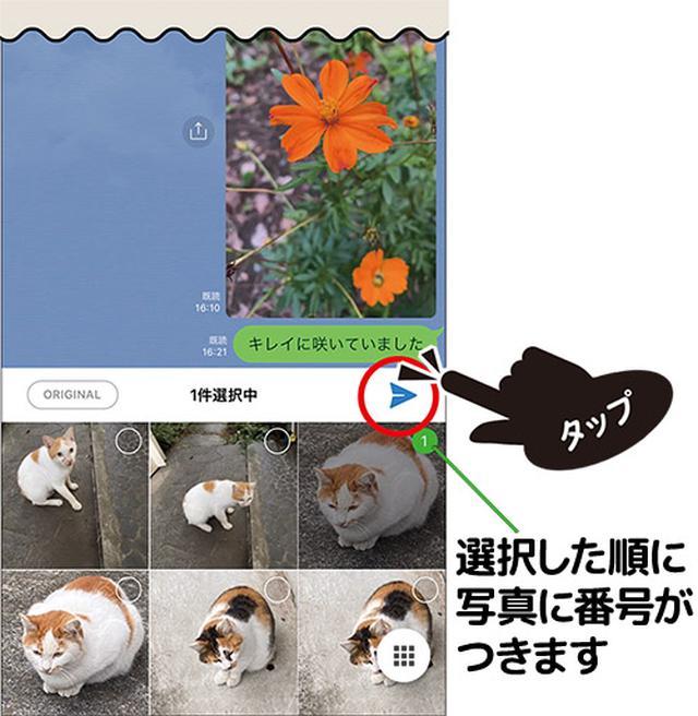 画像7: 一番簡単で手軽な 写真の送り方